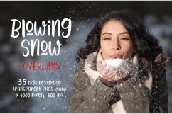Blowing Snow Overlays Product Image 1