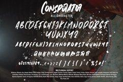 Conspirator - Brush Font Product Image 3