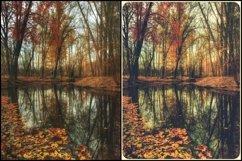 46 Vintage Autumn Colors Lightroom Presets Product Image 2