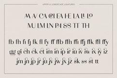 Adagio Decorative Ligature Font Duo Product Image 3