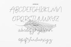 Congealed - Signature Font Product Image 4