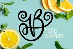 Web Font Swirly Monogram Font - Swirly Initials Product Image 1
