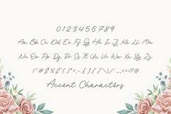 Rachel Bowie Modern Monoline Handwritten Font Product Image 4