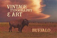 Buffalo Typeface Product Image 4