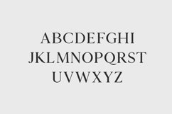 Zimra Serif Font Family Product Image 2