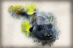 Fish printables in 7 different formats 300 dpi Pack 09 Product Image 1