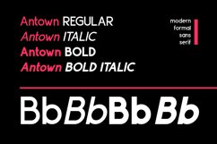 ANTOWN | modern & formal sans family Product Image 3