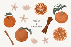 Sage Green Citrus Illustrations Product Image 5