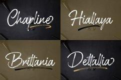 Shillentta Product Image 6