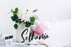 Shintania Product Image 2