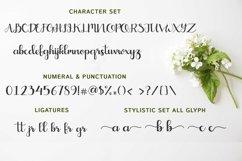 Web Font Crayonila Script Product Image 2