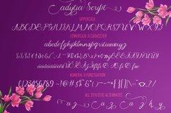 Adytia Script Product Image 2