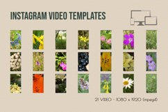 Instagram Video Templates. Nature flowers Product Image 3