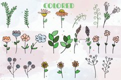 Meadow Ferns & Wild Flowers | Color Hand Drawn Leaves, Plant Product Image 2