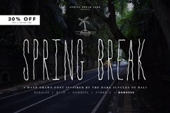 Spring Break Font & Bonus Graphics Product Image 1
