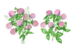 Watercolor wildflower clover. Wildflower clipart. St.Patrick Product Image 5
