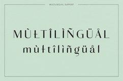Adagio Decorative Ligature Font Duo Product Image 4
