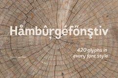 Pines Bold & Pines Bold Italic Product Image 5