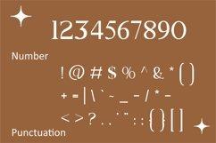 Elmo | Modern Serif Product Image 3