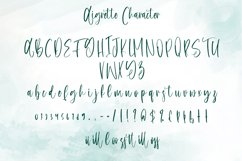 Aigrette - Beautiful Font Product Image 4
