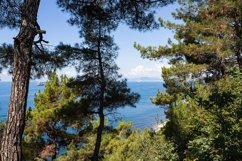 Hiking and view of the forest, rocks and sea coast. 2pcs Product Image 2