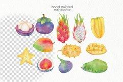 Watercolor Tropics Clipart Product Image 2