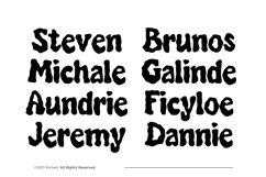 Audylia Font Product Image 2