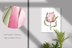 """Watercolor ClipArt """"Tropical Flowers Product Image 4"""