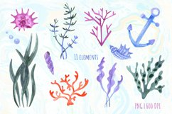 Under the Sea Watercolor Clipart. Ocean animals PNG Product Image 3