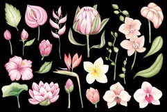 """Watercolor ClipArt """"Tropical Flowers Product Image 3"""