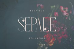French Typeface - 4 fonts Product Image 5