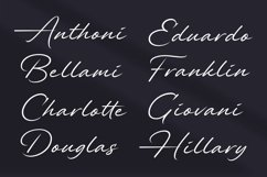 Alander Script Font Product Image 2