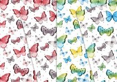 Sweet Butterflies 12x12 Product Image 4