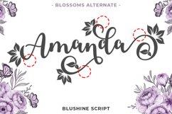 Blushine Script Product Image 4