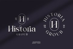 Shandora a Modern & Classy Serif Font Product Image 3