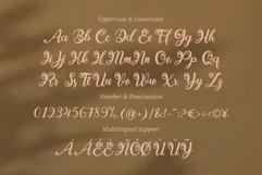 Berllina - Elegant Script Font Product Image 3