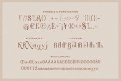 Aesthetic - Modern Serif Font Product Image 5