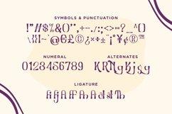Bodor - Unique Handwritten Font Product Image 5