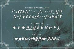 Brickrow - Script Typeface Product Image 3