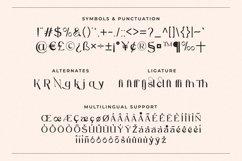 Marsela - Modern & Elegant Serif Product Image 3