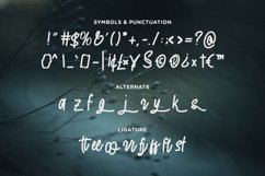 The End Story - Handwritten Font Product Image 4
