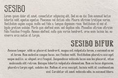 Sesibo Fonts Product Image 2
