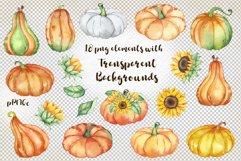 Watercolor Pumpkin clipart, Pumpkin PNG, autumn clipart Product Image 3