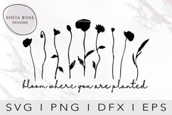 Bloom where you are planted SVG, Bloom SVG, Wildflower SVG Product Image 1