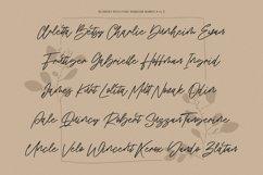 Blondey Rich Signature Script Font Product Image 6