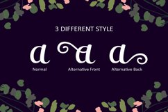 Aduhay Script Product Image 3