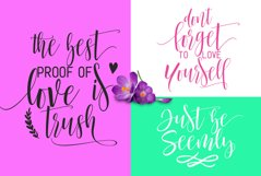 Mustache Script Font Trio & Swash Product Image 3