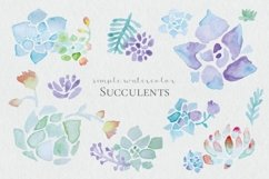 Watercolor Succulents Product Image 1