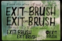 Exit Brush & SVG Font Product Image 2
