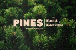 Pines Black & Pines Black Italic Product Image 1